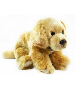 Plyšový pes zlatý retriever 28cm