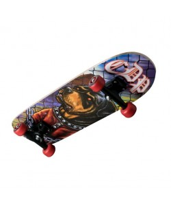 "28"" Skate"